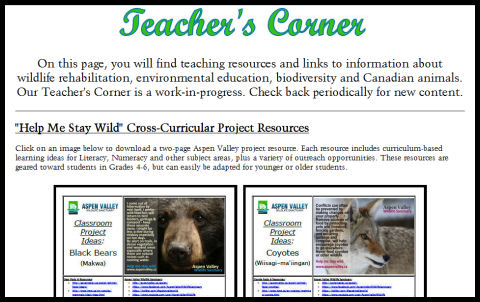 teacher-corner-blog