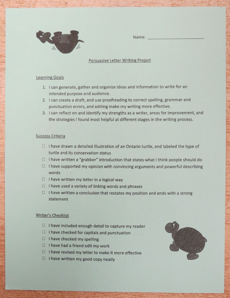 turtle-success-criteria